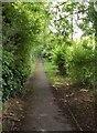 SU0460 : Former lane at Etchilhampton by Derek Harper