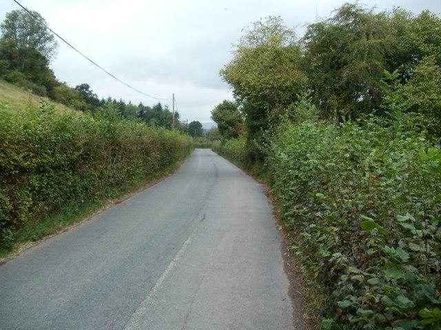Country lane NW of Ewyas Harold