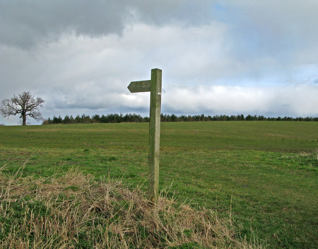 Field with footpath south-west of Long Marston