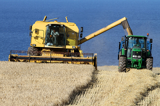 Combine harvesting at Woodend