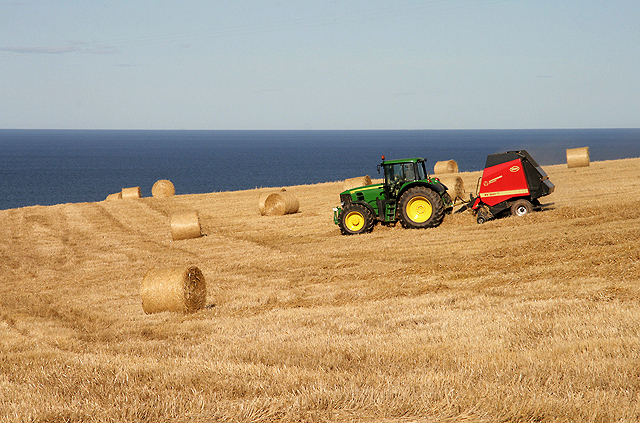 Farmland at Woodend