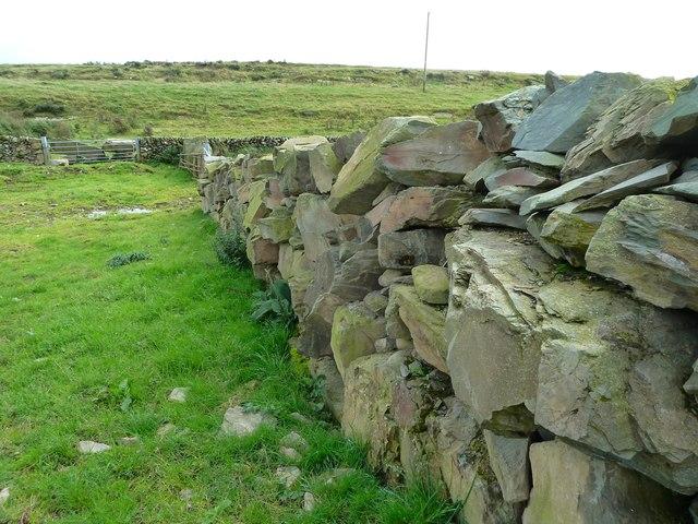 Stane Wall