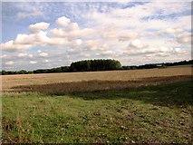 TF8707 : Stubble field, Holme Hale by Evelyn Simak