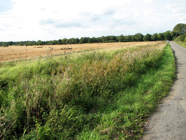 Harvested field west of Brown's Lane, Holme Hale