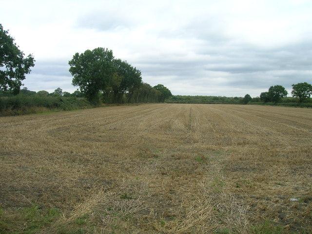 Farmland, Tilts Hills