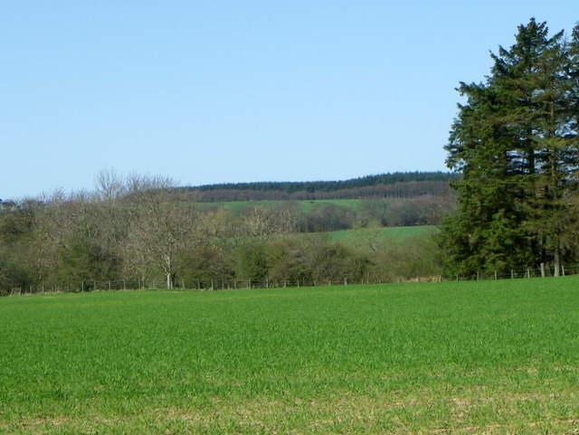 Arable land near Cairncross