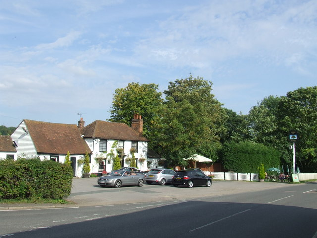 Theydon oak, Fiddlers Hamlet near Epping