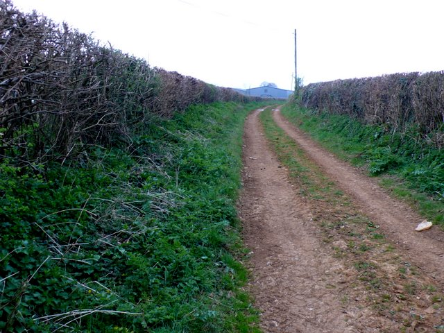 Track to Trent Path Lane