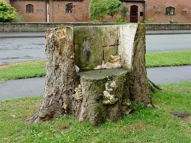 Stylish wooden seat on The Green at Weston, Staffordshire