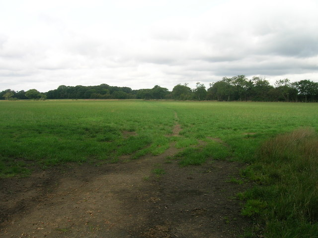 Farmland off Haywood Lane