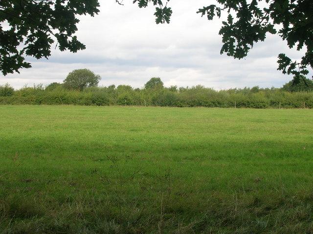 Farmland off Airey Lane