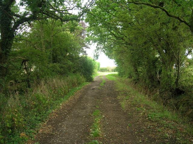 Airey Lane towards Thorpe in Balne