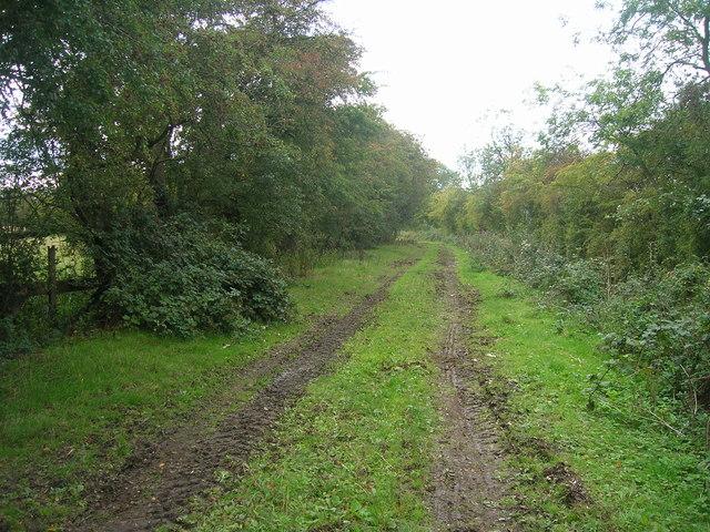Farm track off Moss Road (footpath)