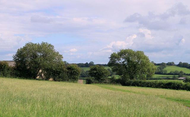 2011 : Top of the hill above Batcombe