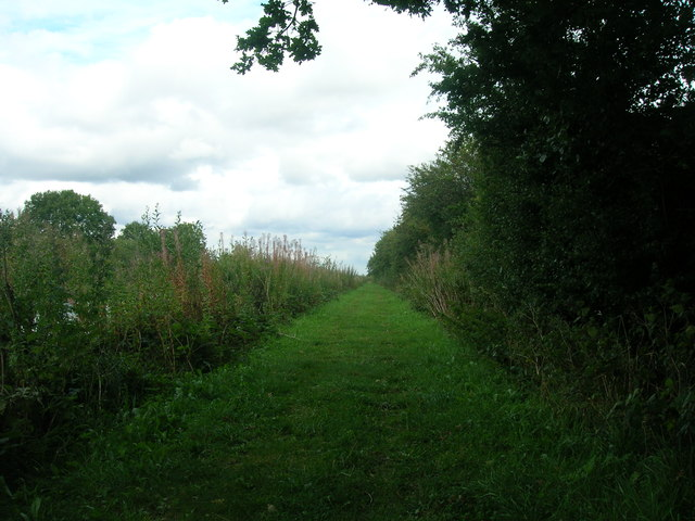 Towpath, New Junction Canal