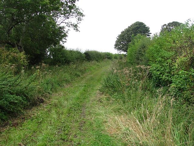 Ednam to Hendersyde path
