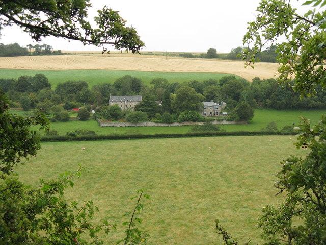 Fields at Haughhead