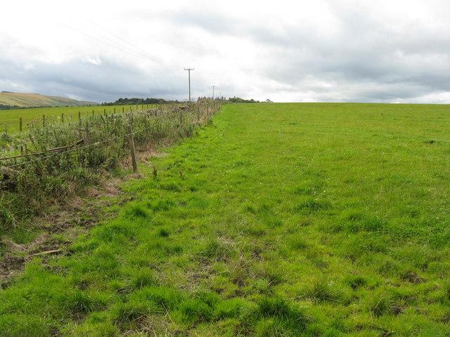 Fields at Whitelaw