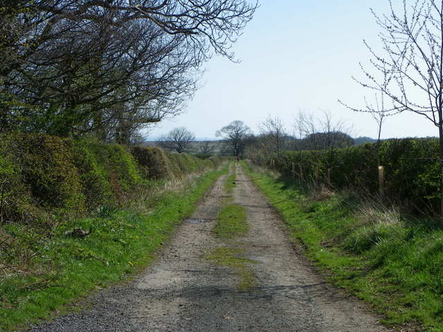 Track near Coldingham