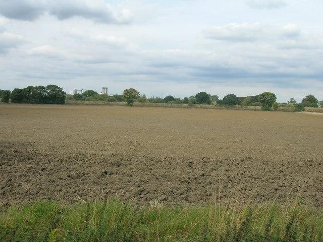 Farmland near Pollington