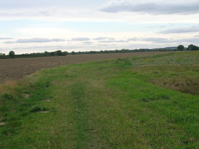 Neville Pits Lane (track)
