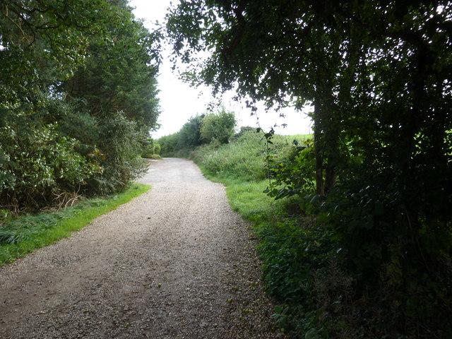 Mid section of Bossington Lane