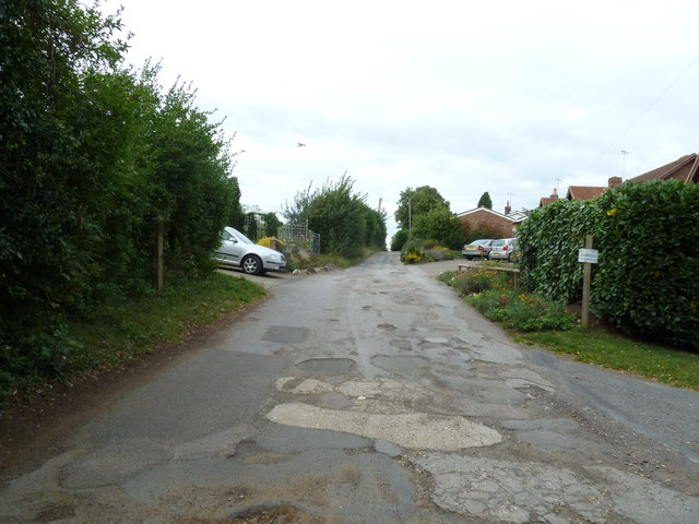 Looking northwards in Bossington Lane