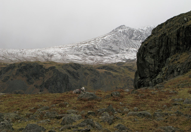 Embedded rocks and crag west of Border End