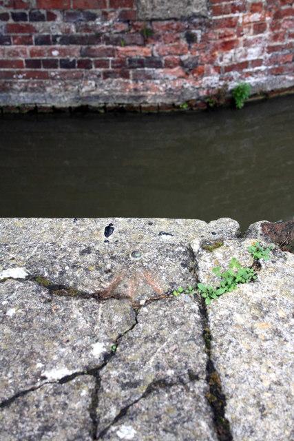 Benchmark on canal bank at Bridge 238