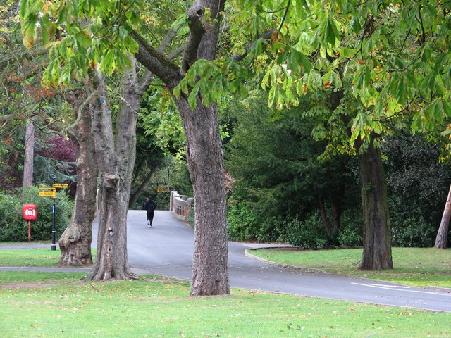 Cannon Hill Park: morning run