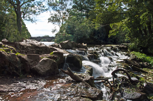 Weir - Clumber Park