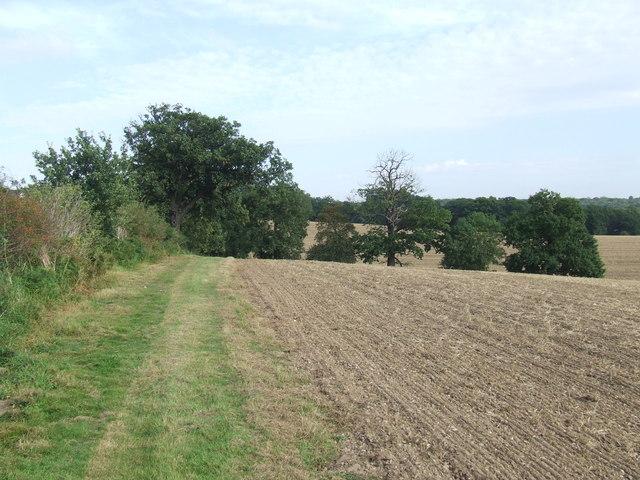 Public footpath near Epping