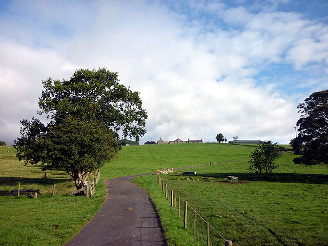 The track to Woodhead Farm, Haltwhistle