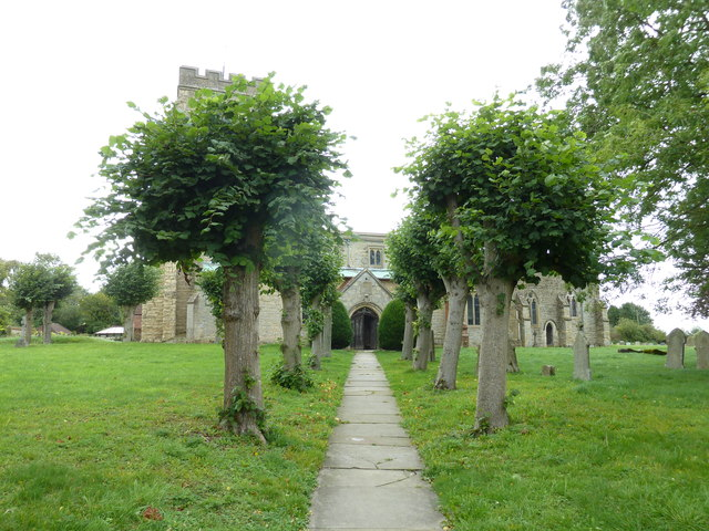 A tree lined path up to St John the Evangelist, Whitchurch