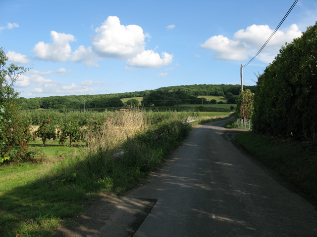 View along lane near Fostall