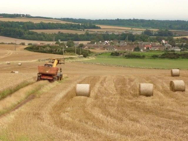 Farmland, Pencraig