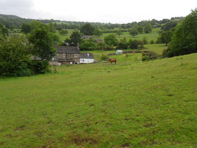 Fields near Lumb Lane
