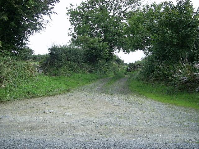 Track to the fields, near Little Newcastle