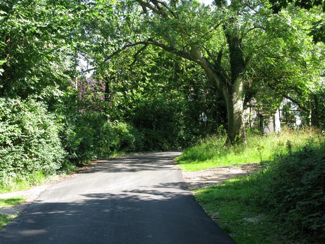 Private road to Dane Court