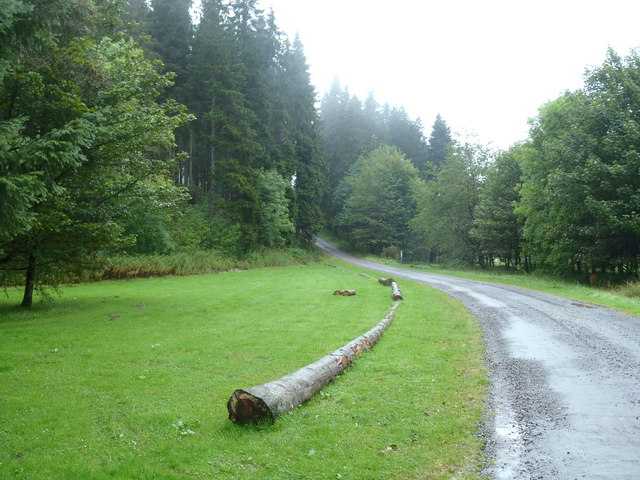Forest track and picnic site, Ae Forest