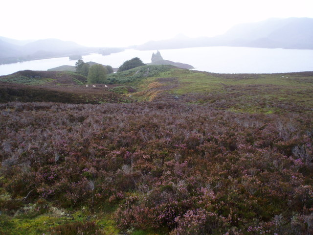 Ruins on Moorland above Loch Tarff