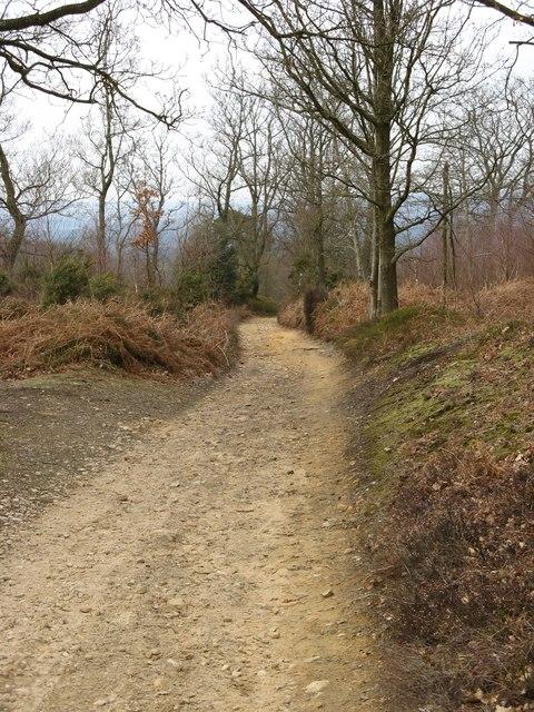 Greensand Way crossing Hindhead Common