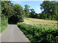 TR2951 : View along School Road towards Tilmanstone by Nick Smith