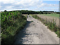 TR2951 : Bridleway between Pike Road and Thornton Lane by Nick Smith