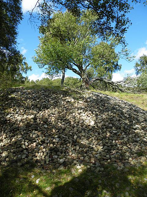 A Stony Mound