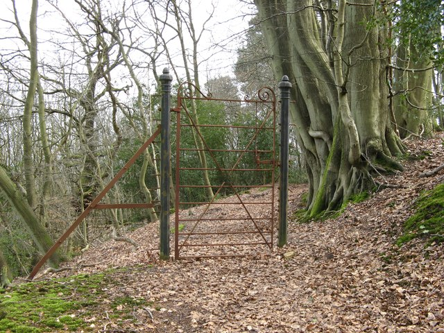Mysterious gate at the top of Hurt hill copse