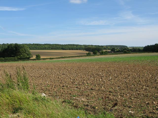 View across farmland towards North Court