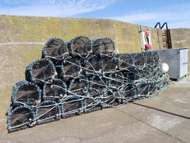 Lobster creels, St Abbs