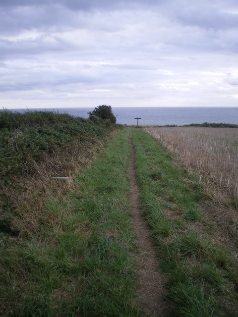 The footpath to New Fall from Lighthouse Road