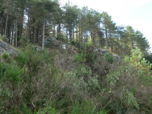 Rocky outcrop in Newborough Forest